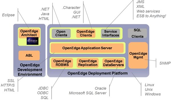 Adding Process To The Openedge Platform Bloor Research