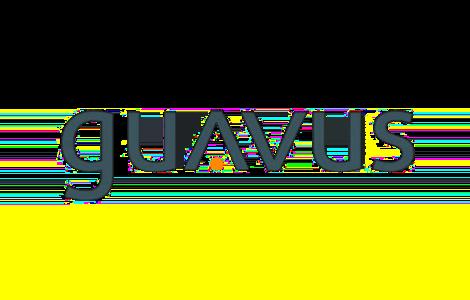Guavus (logo)