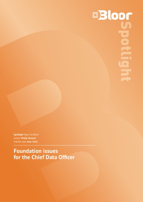 Cover for Foundation issues for the Chief Data Officer