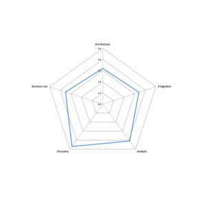 Spider diagram for IBM InfoSphere Discovery