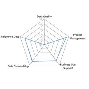 Spider diagram for Data Governance Center