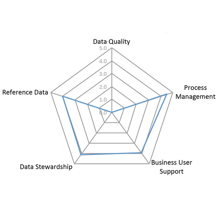 Spider diagram for Data Governance Center