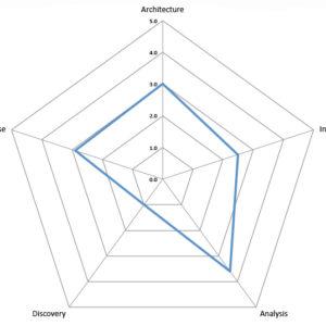 Spider diagram for DQ Analyzer