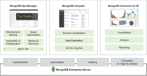 Fig 01 MongoDB editions and additional products available