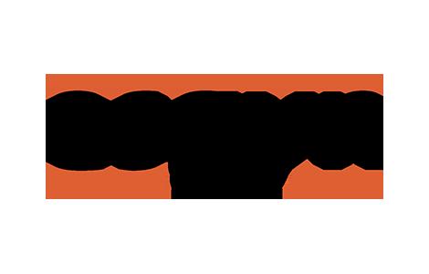 ESGYN DB logo