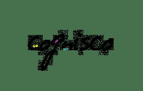 cognisco logo