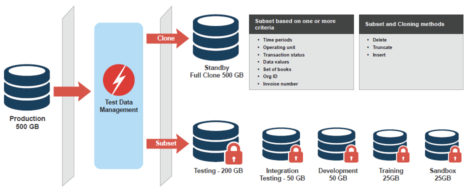 Fig 01 Data subsetting using Solix Technologies