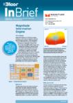 Cover for the Magnitude Information Engine InBrief