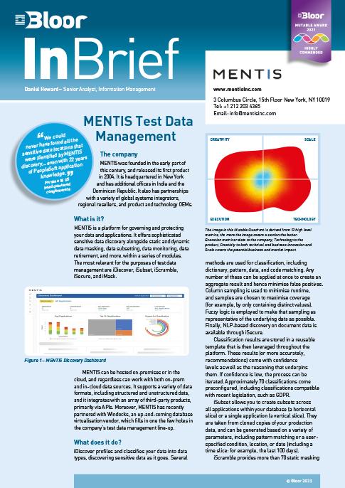 Cover for MENTIS Test Data Management (2021)
