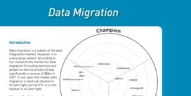 Cover for Data Migration Market Update 2008