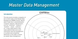 Cover for Master Data Management Market Update - 2008