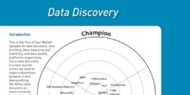 Cover for Data Discovery