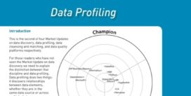 Cover for Data Profiling Market Update 2009
