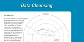 Cover for Data Cleansing