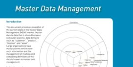 Cover for Master Data Management Market Update - 2009