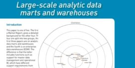 Cover for Large-scale analytic data marts and warehouses