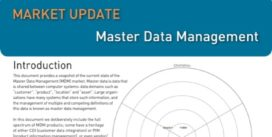 Cover for Master Data Management Market Update - 2010