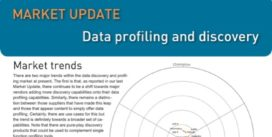 Cover for Data Profiling and Discovery Market Update 2013