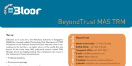 Cover for BeyondTrust MAS TRM