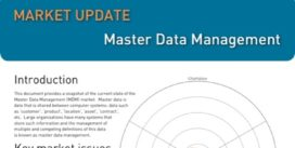Cover for Master Data Management Market Update - 2014