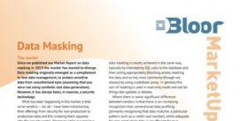 Cover for Data Masking 2015