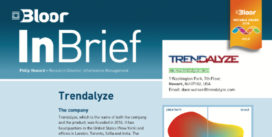 Cover for the Trendalyze InBrief