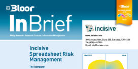 Cover for Incisive Spreadsheet Risk Management
