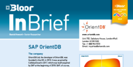 Cover for SAP OrientDB