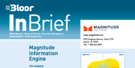 Cover for the Magnitude Information Engine InBrief