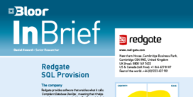REDGATE InBrief cover thumbnail