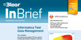 INFORMATICA InBrief cover thumbnail