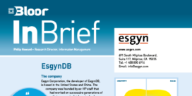 00002481 - ESGYN DB InBrief cover thumbnail