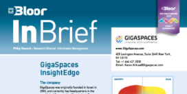 00002482 - GIGASPACES INSIGHTEDGE InBrief cover thumbnail
