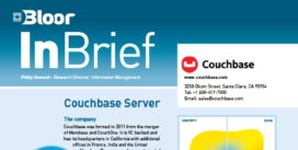 COUCHBASE SERVER InBrief cover thumbnail