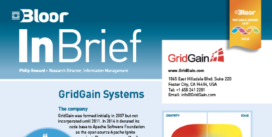 GRIDGAIN SYSTEMS InBrief cover thumbnail
