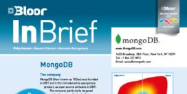 00002486 - MONGODB InBrief cover thumbnail
