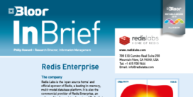 REDIS ENTERPRISE InBrief cover thumbnail