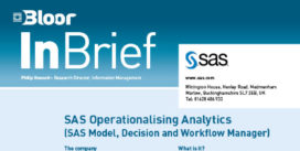 SAS Operationalising Analytics InBrief cover thumbnail