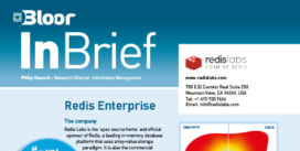 REDIS InBrief cover thumbnail