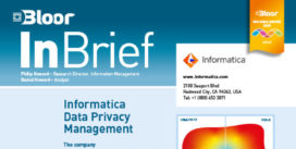 Informatica Data Privacy Management InBrief (SENSITIVE DATA) cover thumbnail
