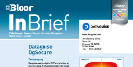 DATAGUISE InBrief (SENSITIVE DATA) cover thumbnail