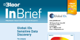 GLOBAL IDs InBrief (SENSITIVE DATA) cover thumbnail
