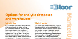 00002554 - DATA WAREHOUSING MU cover thumbnail