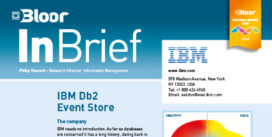 IBM InBrief cover thumbnail