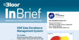 GLOBAL DATA EXCELLENCE (Data Gov) InBrief cover thumbnail