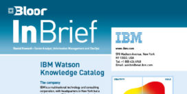 IBM (Data Gov) InBrief cover thumbnail