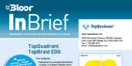 TopQuadrant TopBraid EDG (Data Gov) InBrief cover thumbnail