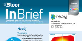 00002590 - NEO4J InBrief cover thumbnail