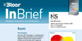 N5 RUMI InBrief (cover thumbnail)