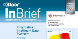 INFORMATICA InBrief (cover thumbnail)